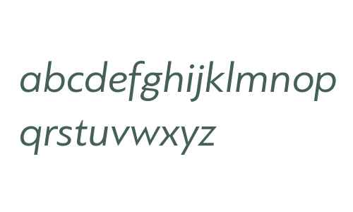 PF Bague Sans W01 Italic