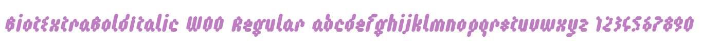 BiotExtraBoldItalic W00 Regular