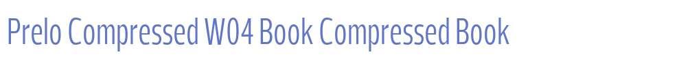 Prelo Compressed W04 Book