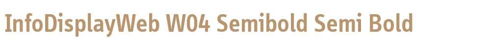InfoDisplayWeb W04 Semibold