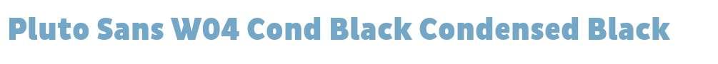 Pluto Sans W04 Cond Black