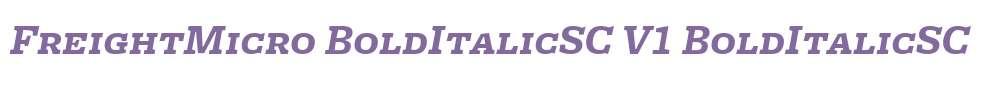 FreightMicro BoldItalicSC V1