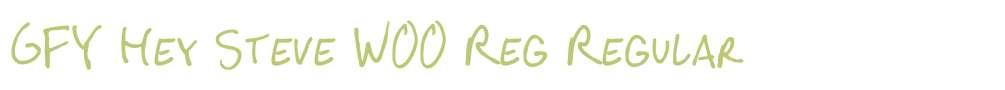 GFY Hey Steve W00 Reg