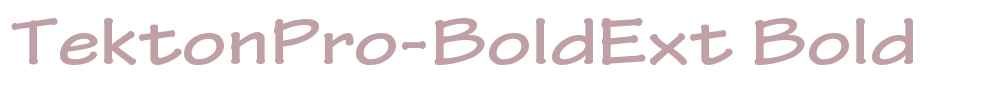 TektonPro-BoldExt