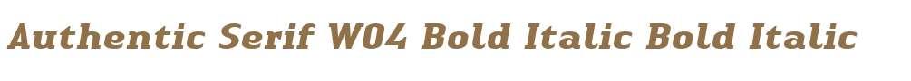 Authentic Serif W04 Bold Italic
