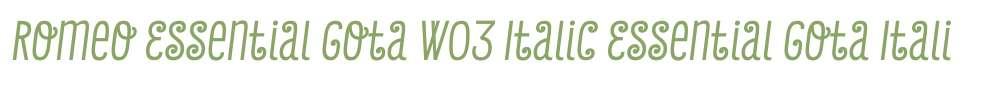 Romeo Essential Gota W03 Italic