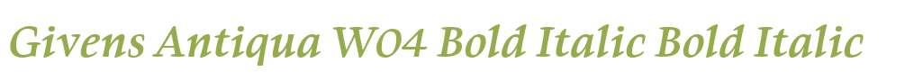Givens Antiqua W04 Bold Italic