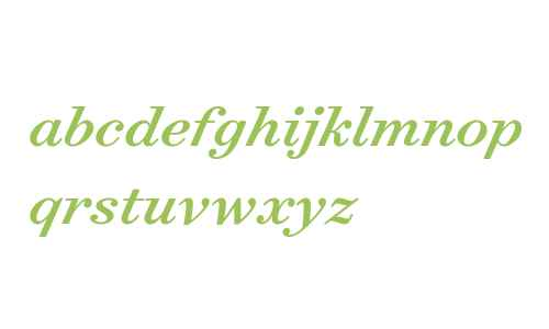 Surveyor Text Medium Italic