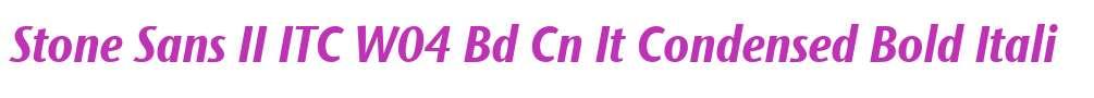 Stone Sans II ITC W04 Bd Cn It
