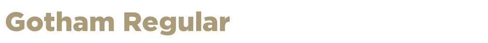 gotham t1 bold Fonts Free Download - OnlineWebFonts COM