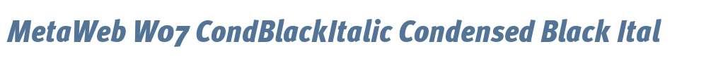 MetaWeb W07 CondBlackItalic