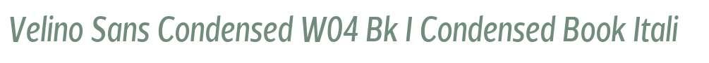 Velino Sans Condensed W04 Bk I