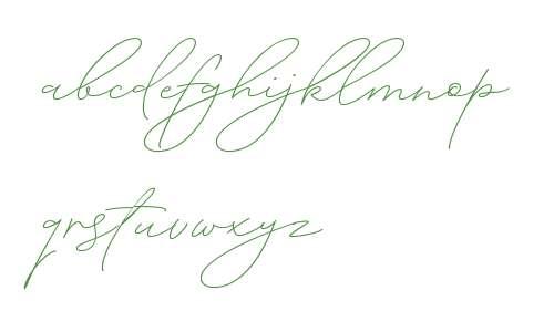 Absolute Beauty Script W00 Rg