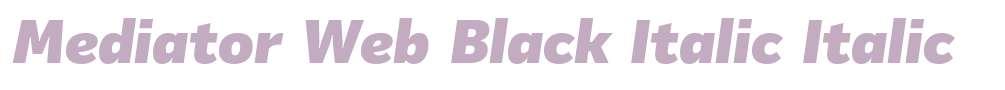 Mediator Web Black Italic