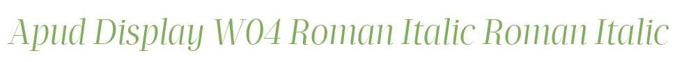 Apud Display W04 Roman Italic