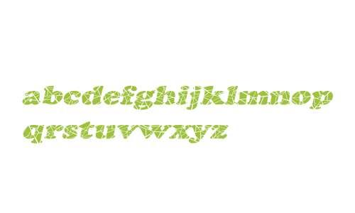 Marshmallow Cracked-Extended Italic