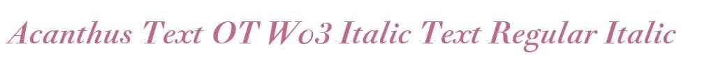 Acanthus Text OT W03 Italic