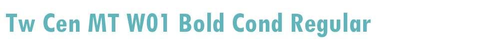 Tw Cen MT W01 Bold Cond