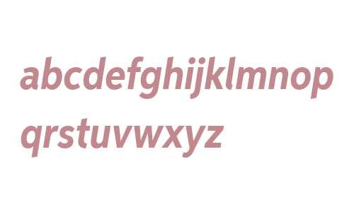 Aspira XNar W01 Bold Italic