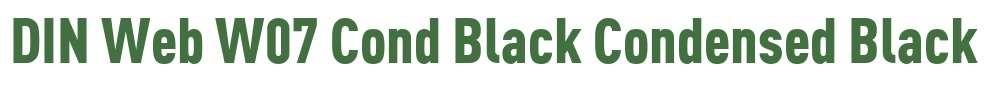 DIN Web W07 Cond Black