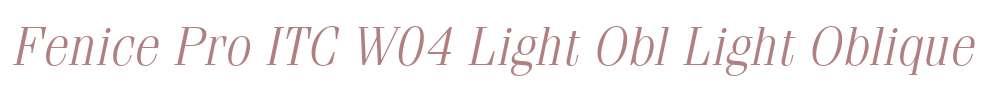 Fenice Pro ITC W04 Light Obl