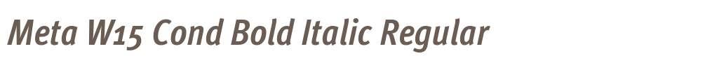 Meta W15 Cond Bold Italic
