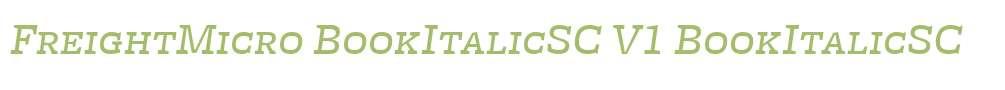 FreightMicro BookItalicSC V1
