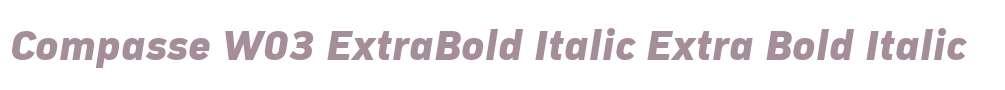 Compasse W03 ExtraBold Italic