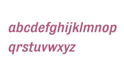 Bulldog W01 Medium Italic