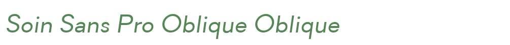 Soin Sans Pro Oblique