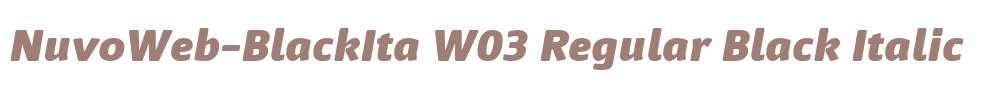 NuvoWeb-BlackIta W03 Regular