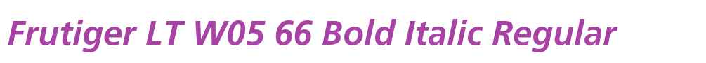 Frutiger LT W05 66 Bold Italic