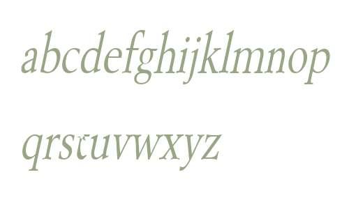 Revive 8 Thin Italic