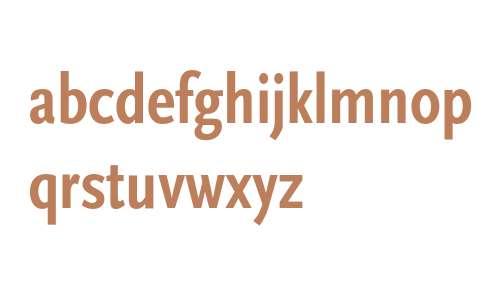 Scala Sans-Bold Cn