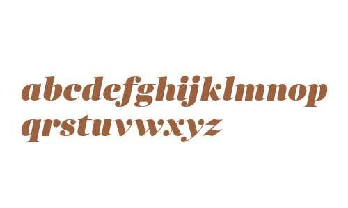 Anglecia Pro Display Black Italic