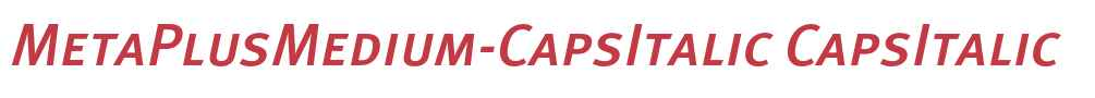 MetaPlusMedium-CapsItalic