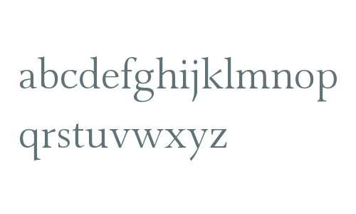 Combi Serif W01 Light