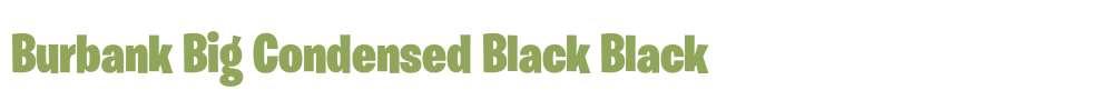 Burbank Big Condensed Black Fonts Free Download