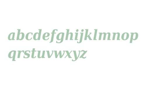 DejaVu Serif Condensed Bold Italic V1