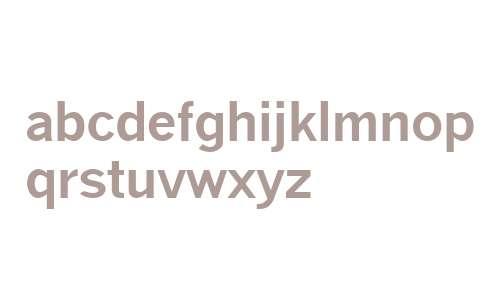 TaxType Bold Italic V2