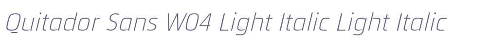 Quitador Sans W04 Light Italic
