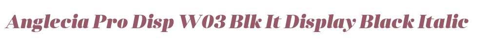 Anglecia Pro Disp W03 Blk It