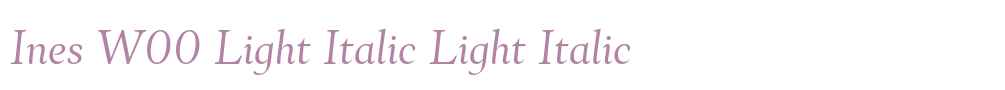 Ines W00 Light Italic