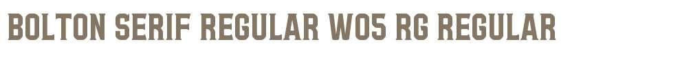 Bolton Serif Regular W05 Rg