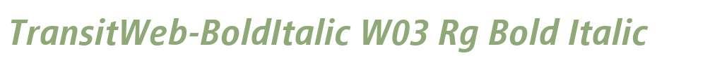 TransitWeb-BoldItalic W03 Rg