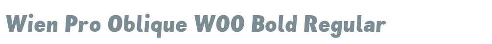 Wien Pro Oblique W00 Bold