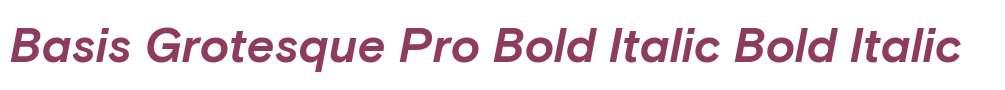 Basis Grotesque Pro Bold Italic