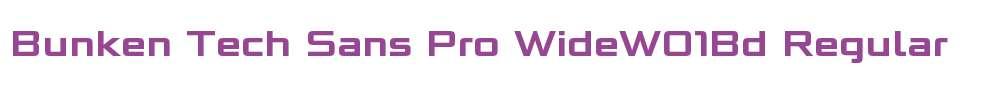 Bunken Tech Sans Pro WideW01Bd