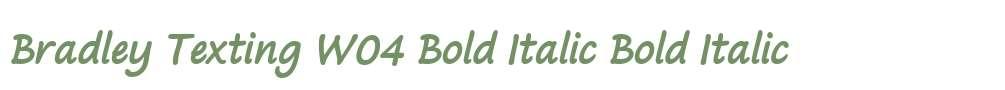 Bradley Texting W04 Bold Italic
