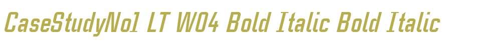 CaseStudyNo1 LT W04 Bold Italic